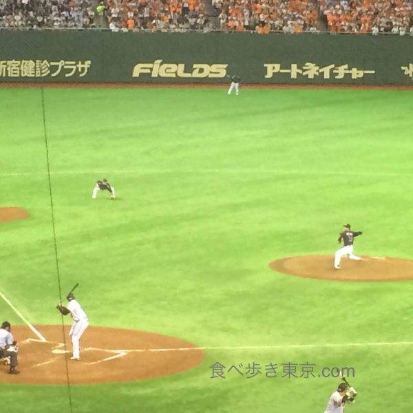 東京ドームで野球観戦、巨人戦