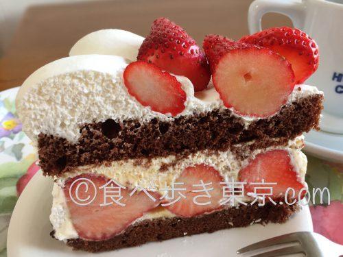 ストロベリーチョコレートケーキ